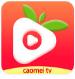 草莓视频无限看在线观看app